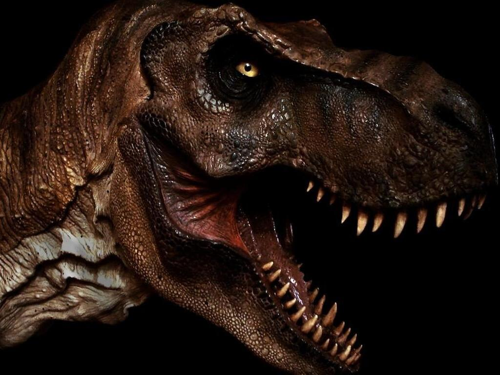 Rs r3 finale tyrannosaurus rex vs allosaurus dinosaurs for Tyranosaurus rex